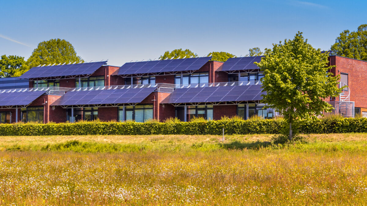 How To Choose The Best Sunpower Solar Panels In Australia For You?